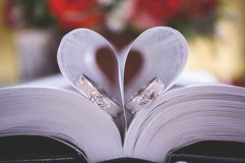 blur book close up decoration